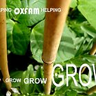 OXFAM GROW comp' with example logo, link to final piece & no logo submitted to comp in notes ! please see both*as plain submit by Tuartkatz