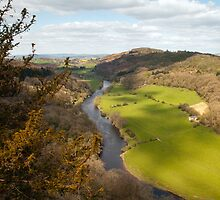 View from Symonds Yat Rock by Steve  Liptrot