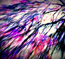 Colour popping twigs. by Livvy Young