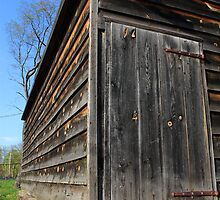 Barn Door by Frank Romeo