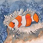 Clown Fish by KeLu