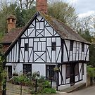 There was a crooked house..... by JEZ22
