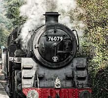 Steam Train  by cameraimagery