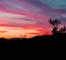 When Heaven Paints The Sky by Diana Graves Photography
