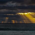 Sun&#x27;s Rays by Jan Fijolek