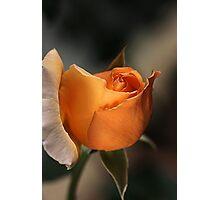 Orange Mood Photographic Print