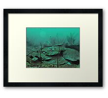 INTO THE EMERALD GREEN Framed Print