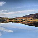 Reflections on Bala  by Irene  Burdell