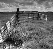 Wooden fence in Friesland by Ruben Emanuel