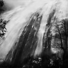 Upper Eurobin Falls in flood by Kevin McGennan