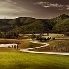 Mudgee Panorama by Adriana Glackin