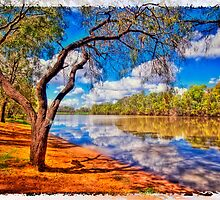 Condamine Postcard by Tracie Louise