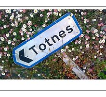 Totnes by hilary bravo