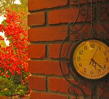 Time for Autumn by Stephen  Shelley