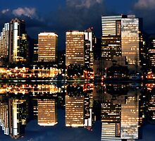 Honolulu Reflection by djphoto