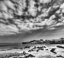 Tenby Harbour North Beach View 2 Mono by Steve Purnell