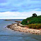 Gulf Island by joevoz