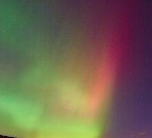 Aurora by PigleT