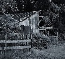 Old Barn with Fence by joevoz