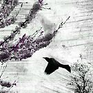 Blackbird Fly by deb cole