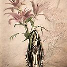 Deco Lilies by Irene  Burdell