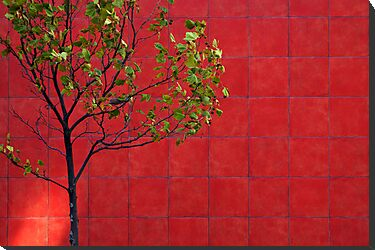 Red Wall by raevan