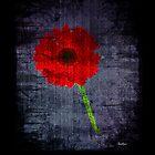 Flora In Red - Triptych by Ian Jeffrey
