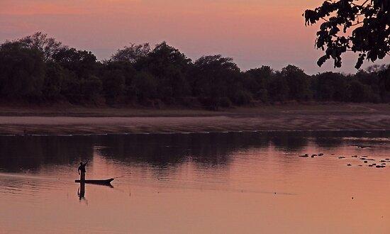 Luangwa sunrise by Dan MacKenzie