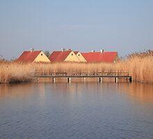 Fertő tó-Neusiedler See by zumi