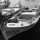 Local Fishing Fleet by John Papaioannou