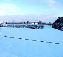 Barbed Wire Vision Of Snow! by DCLehnsherr