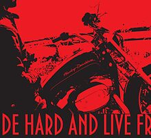 THE BIKER RIDE HARD AND LIVE FREE by Christopher McCabe