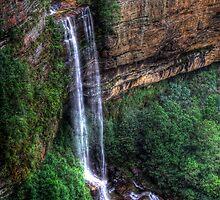 Gordon Falls - Blue Mountains NSW Australia by Brad Woodman