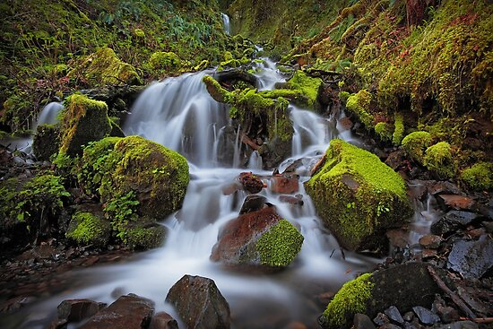 Pacific Crest Falls II by Tula Top