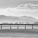 Dargaville Bridge by Barrie Turpin
