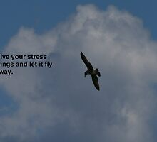 Give Your Stress Wings by CapturedDelight