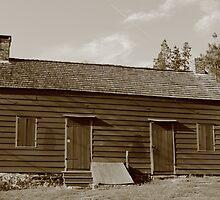 Farmhouse by Frank Romeo