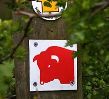 Public Footpath - Beware Of The Bull by Jazzdenski