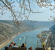 View of the Rhine Gorge from above Oberwesel, Germany. by David A. L. Davies