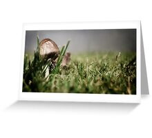 Little Mushrom Greeting Card