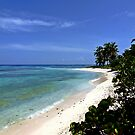 Caribbean Dream Beach by globeboater