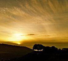 Carmel Sunset by Mariah Jones