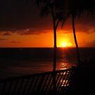 Maui Sunset by Brenda Boisvert