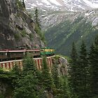 White Pass Train - Near Skagway Alaska by Stephen Stephen