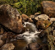 Kaiate Boulders by Ken Wright