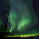 April23rd/12 Auroras by peaceofthenorth