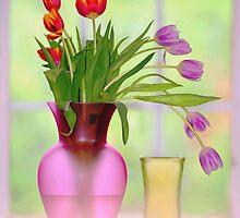 window and tulips.. by JOSEPHMAZZUCCO