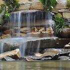 Garden Falls by Robin Lee