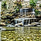 Garden Waterfall by Robin Lee