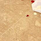 Petals on the TIled Floor by joshuamolina